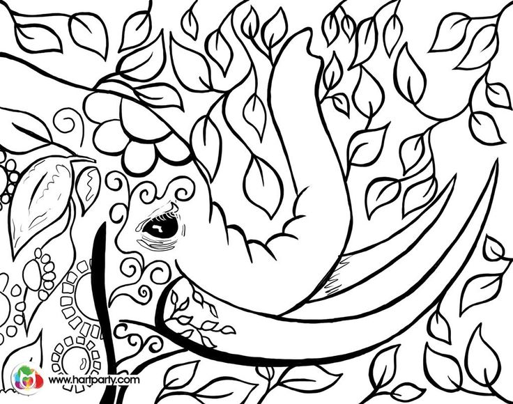 Bohemian Elephant Trace And Coloring Page Digiprint