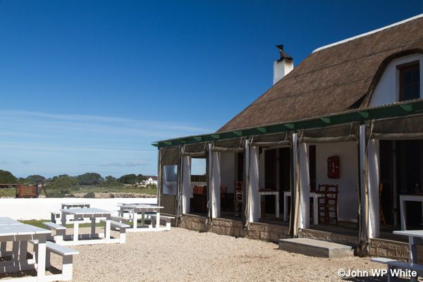 De Hoop Nature Reserve - All things bright and beautiful