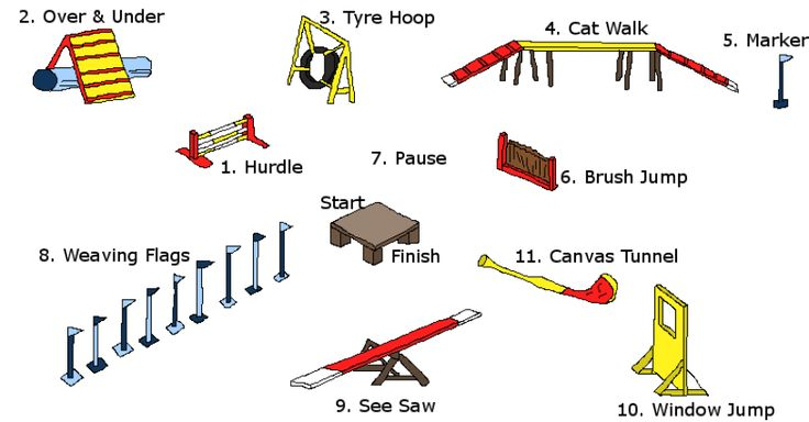Image result for brush agility jump