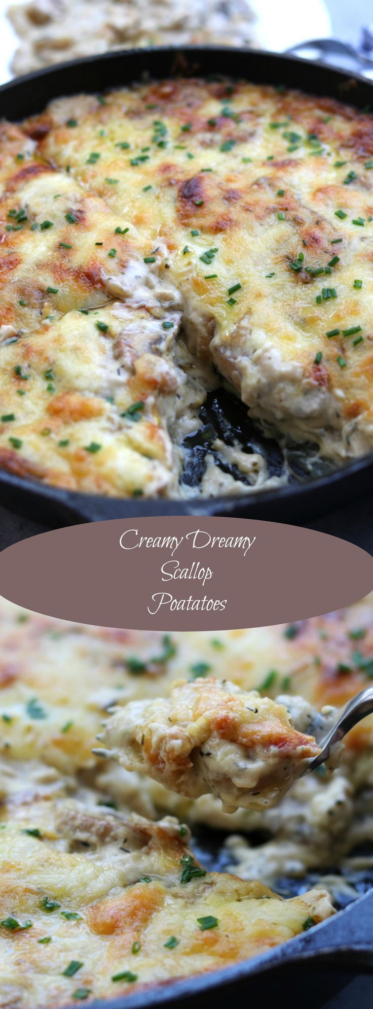 Made from scratch, Creamy Dreamy Scallop Potatoes is the ultimate Holiday side dish. Full of comfort and oozing with a cheesy herbed mushroom cream sauce, your taste buds with be delighted. #FallFest http://www.thefedupfoodie.com