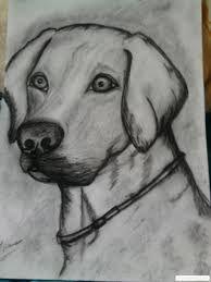 desene in creion cu animale simple - Căutare Google