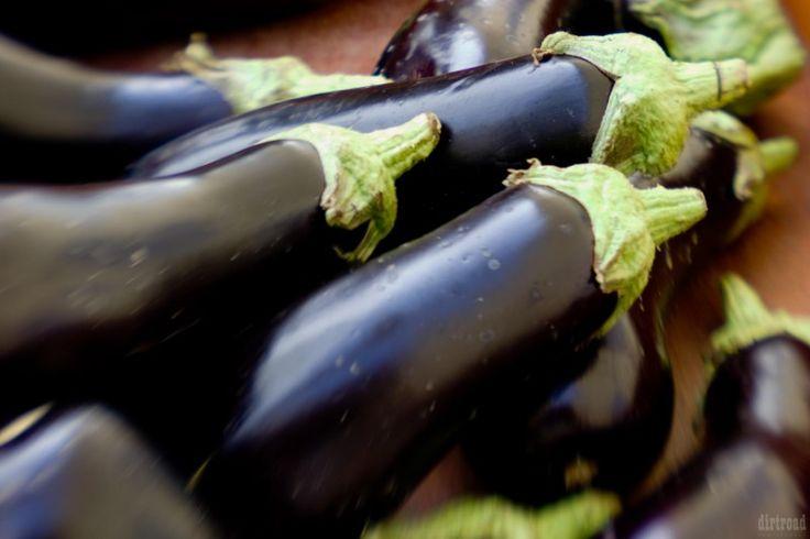 """9 factos curiosos sobre beringelas – Hortar – Olá, internet, hoje trago-te 9 curiosidades sobre as beringelas. Eu sei que tu adoras listas, por isso cá vai: 1 – A beringela é originária da Índia. Lá chamam-lhe """"brinjal"""". 2 – Os italianos chamam-lhe """"melanzana"""". Maçã louca. 3 – Os italianos percebem muito de pizza e pasta, mas de beringelas não... #beringela #hortar #horta"""