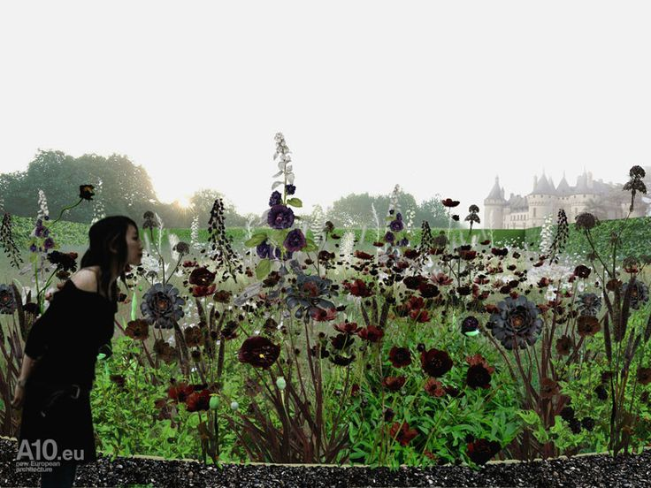 Garden of Escher, Chaumont-sur-Loire - Поиск в Google