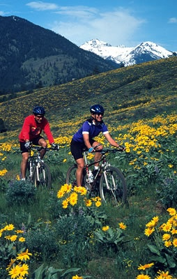 Stay with us and make use of Sun Mountain Lodge biking trails in Winthrop, WA while you are camping!  You might also grab a bit to eat at their lounge.  Really good lunches and a view you will never forget!