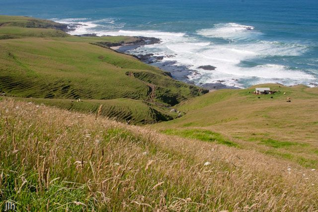 This is one of the photos we are considering for our 2016 calendars.  This piece of coastline lies between the Herekino and Whangape Harbours/Harbors.  The building in the distance is a bach or beach house, but it is not a beach house with connotations of luxury; no electricity, no phones, no mobile phones, no television and no internet.  We love how the tiny building showcases the isolation and wide open spaces of this piece of New Zealand coastline.