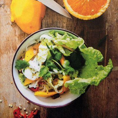 'Chinese kool hoort thuis in het rijtje van uit de kluiten gewassen groenten die zelden in één keer opraken,' zegt Jennifer van boek/blog Empty the Fridge, waar ik gisteren over schreef. Een waarheid als een koe. Zij maakt er deze pikante zoetzure salade mee, met mango. Wel beslist een rijpe mango nemen, maar dat lijkt …