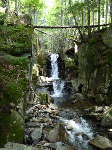 Dixville Notch trails