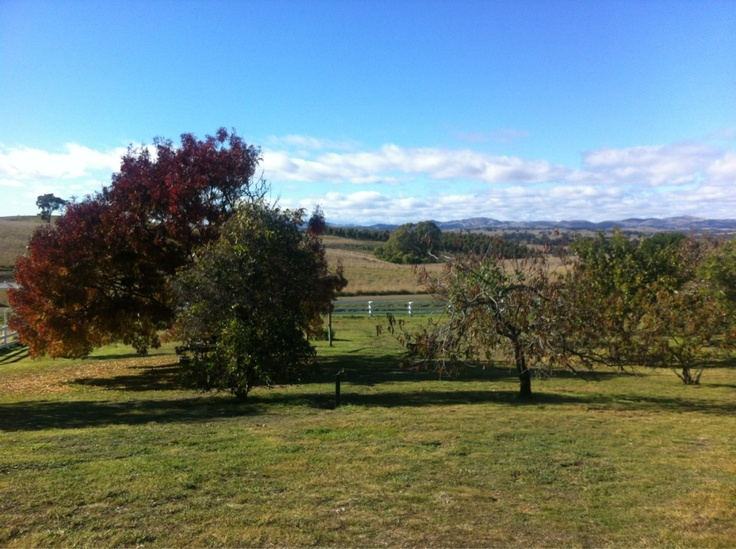 Lazy weekend in Heathcote, Vic.  Submitted by: ME  May 5, 2012