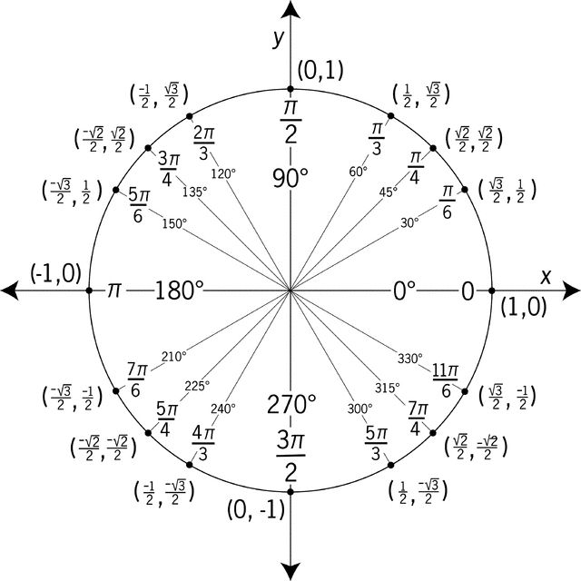 angles and radians of a unit circle worksheet | Unit Circle Labeled ...