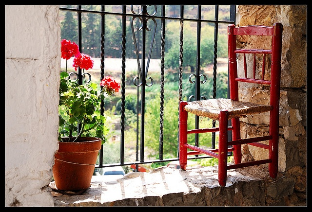 Geraniums and little red chair in the window.