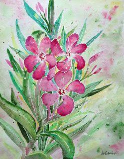 Galéria Kika: Oleander