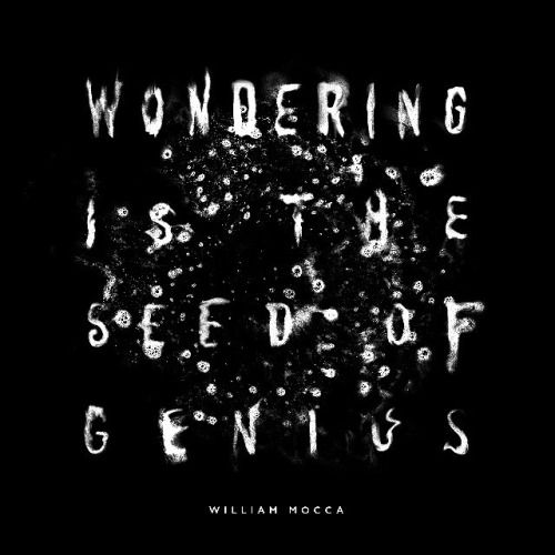 "Typeverything.com""Wondering is the Seed of Genius"" – A William Mocca quote by Kyle Wilkinson."