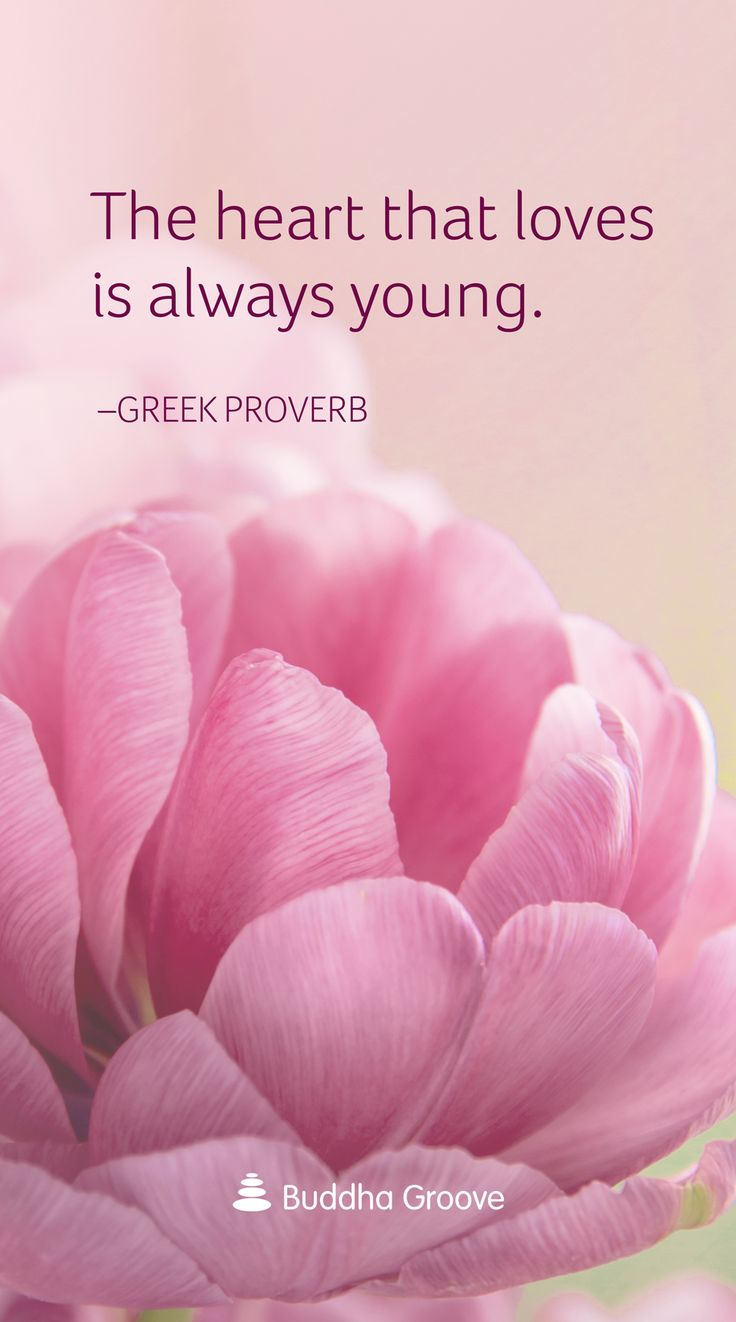 "Quote about the Heart: ""The heart that loves is always young"""
