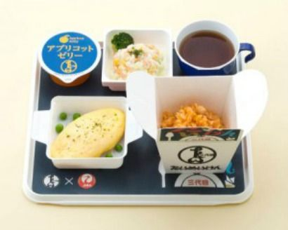 Japan Airlines Food Tray