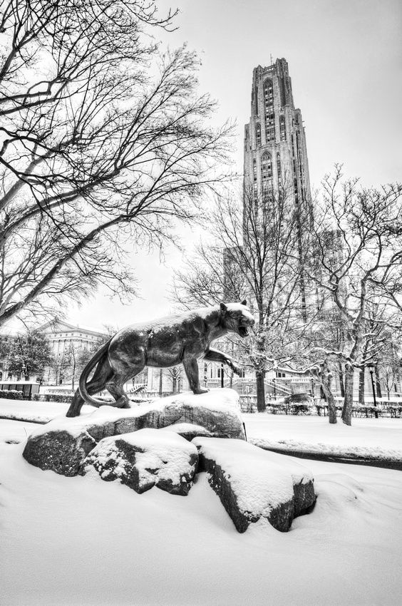 Pitt Panther statue and the Cathedral of Learning on the Campus of the University of Pittsburgh in the snow.