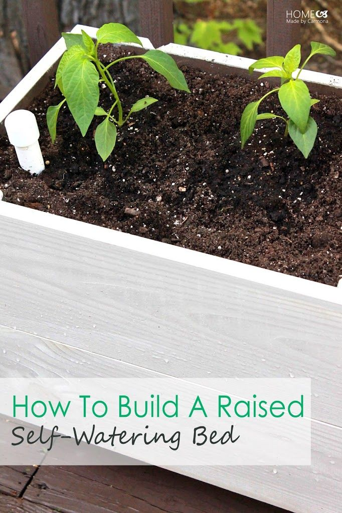 Building Raised Sub-irrigated Beds | http://www.homemadebycarmona.com/ | #garden #diy