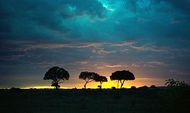 USA Todays 7 Wonders of World -Maasai Mara National Reserve is a large game reserve in SW Kenya, only a fraction of the Greater Mara Ecosystem. 9of15