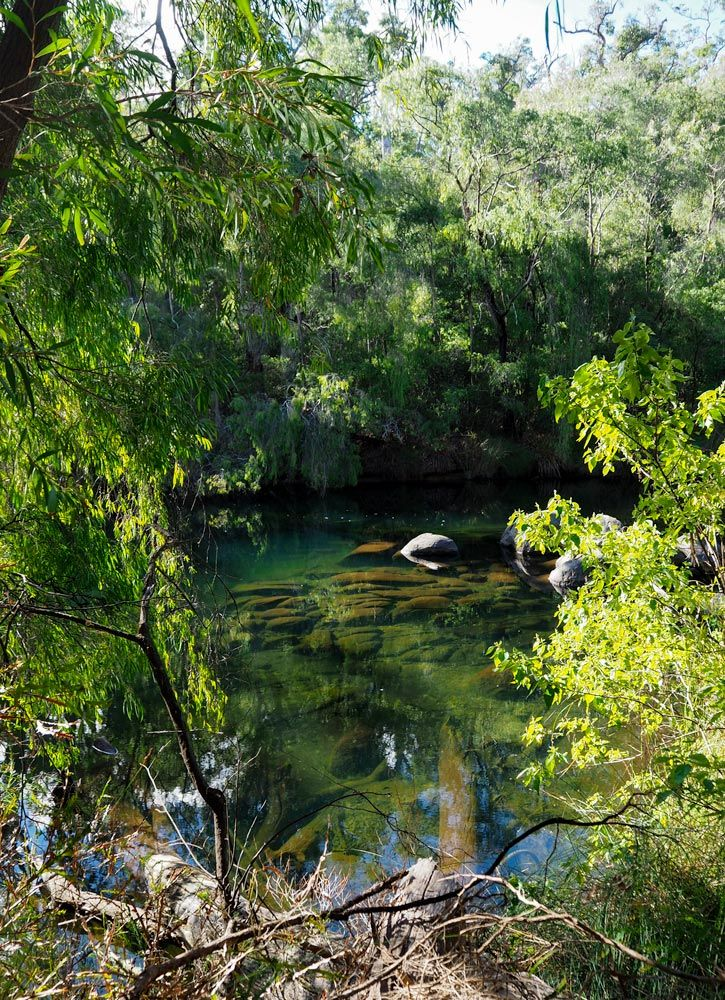 Collie River on Lennard Drive, near Honeymoon Pool in Wellington National Park, Western Australia.