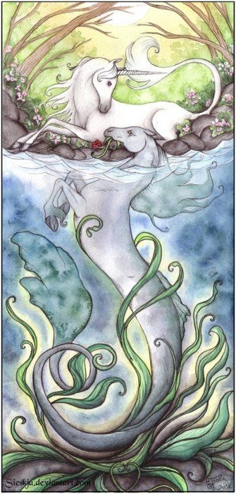 Hippocampus Mythology | celtic # mythology # irish # kelpie BEAUTIFUL