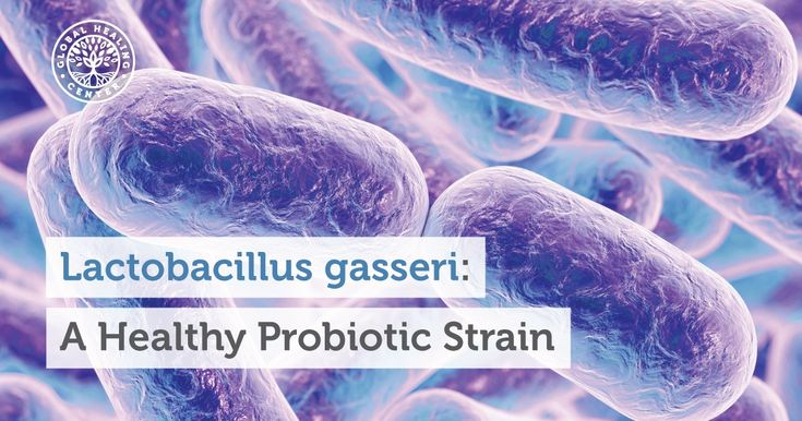 Lactobacillus gasseri supports efficient digestion and studies have linked normal blood sugar to this incredible probiotic. Learn benefits and sources of Lactobacillus gasseri.