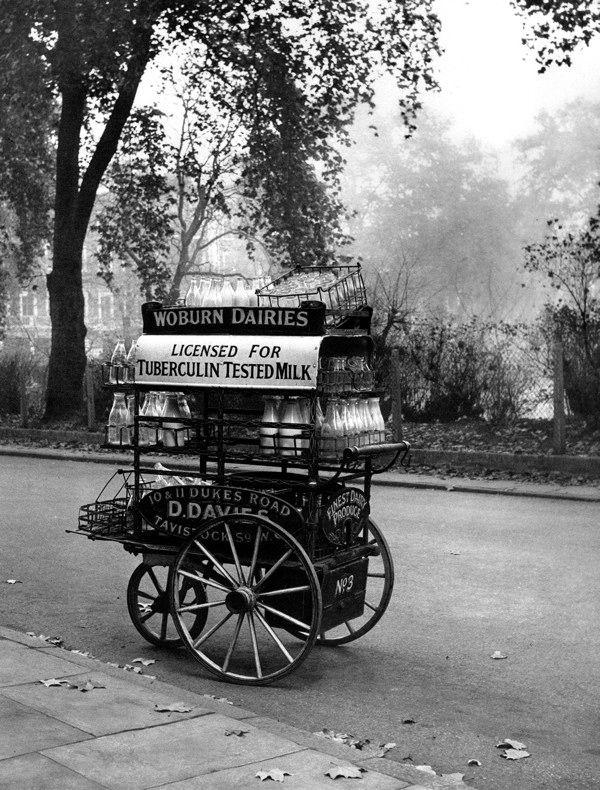 Milk cart in Gordon Sq, Bloomsbury. Israel Bidermanas - 1952 - 'Charmes de Londres'