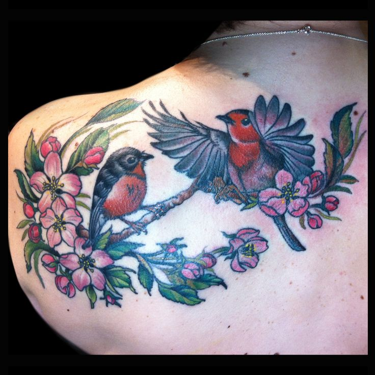 Robins and apple blossom tattoo done by Jessi Lawson  @Jessi_Lawson_Tattooer  www.JessiLawson.com