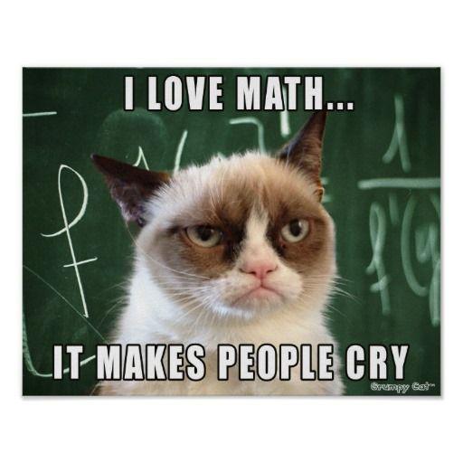 Grumpy Cat Poster- I love math it makes people cry http://www.zazzle.com/grumpy_cat_poster_i_love_math_it_makes_people_cry-228956404449333009
