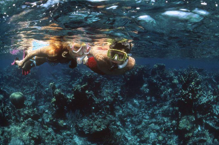 Der er rigtig mange smukke snorklesteder i Dansk Vestindien, bl.a. omkring øen St. John.