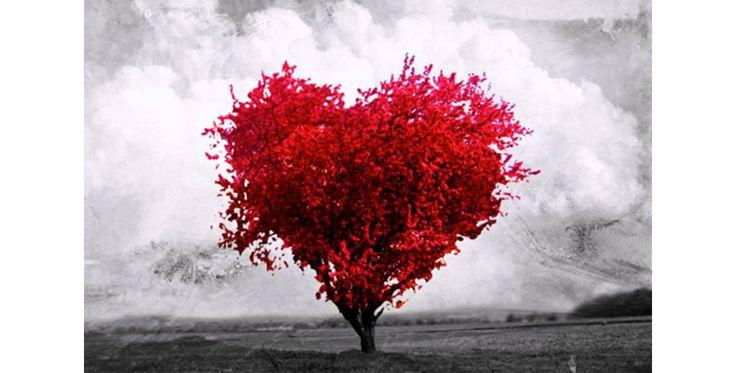 Encheram-me de AMOR #Cancro Aqui: www.ofabulosodestinodemariaamelia.pt/encheram-me-de-amor/