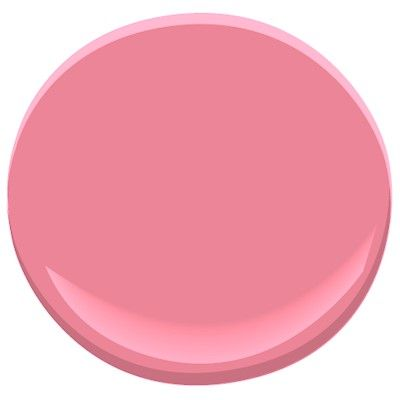 #gypsyrose by @Benjamin Moore great color to add a pop to a room, ceiling, back of cabinets...