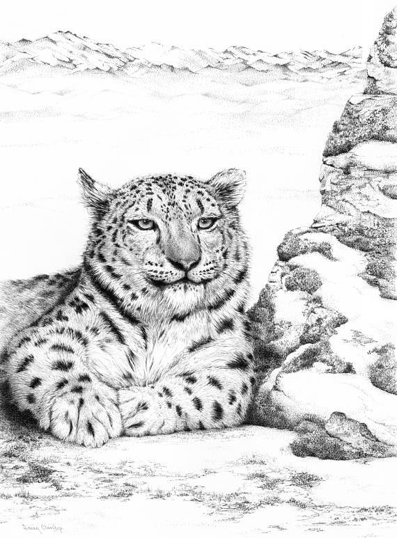 JUST CHILLIN' Snow Leopard open edition fine art print