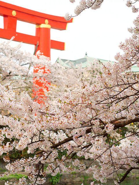 平安神宮・岡崎の春 / Heian-jingu Shrine in Spring