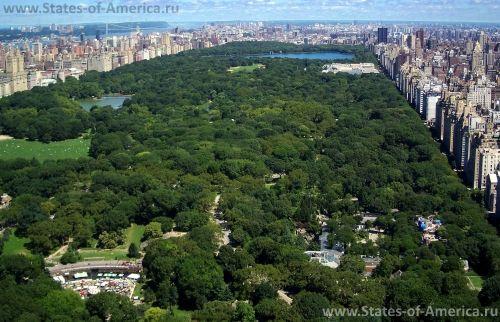 Вид на Центральный парк Нью-Йорка
