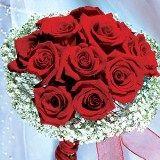 Νυφική ανθοδέσμη με κόκκινα τριαντάφυλλα 13 και 10 Gypsophilia (OC) [Συμπεριλάβετε Λουλούδι Τροφή]