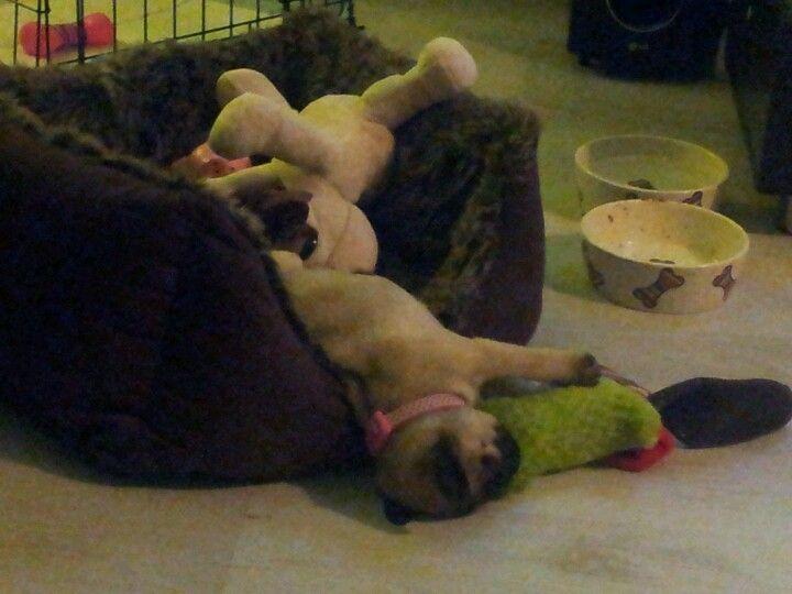 and sleep!