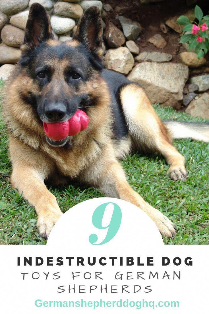 Dog Toys Dog Toys Indestructable Kong Dog Toys Outdoor Dog Toys