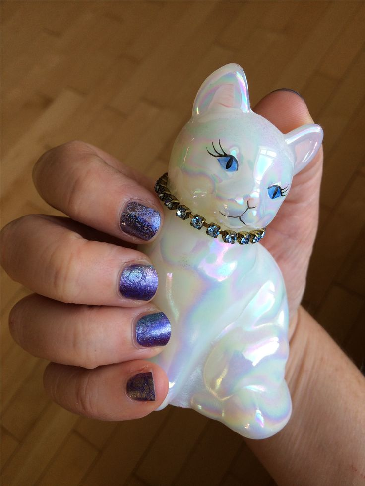 This purrfect #jamicure brought to you by #meowzersjn and #risingstar2017jn