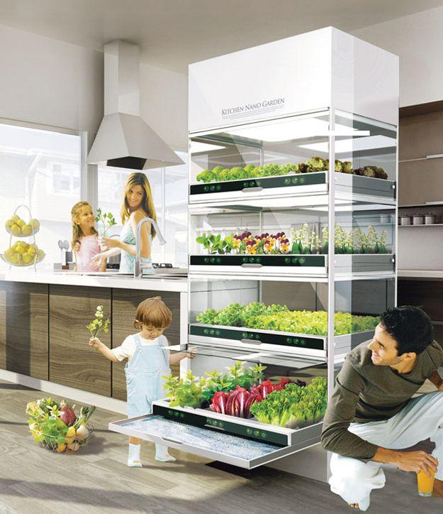 Você pode cultivar vegetais em um jardim tecnológico no seu apartamento