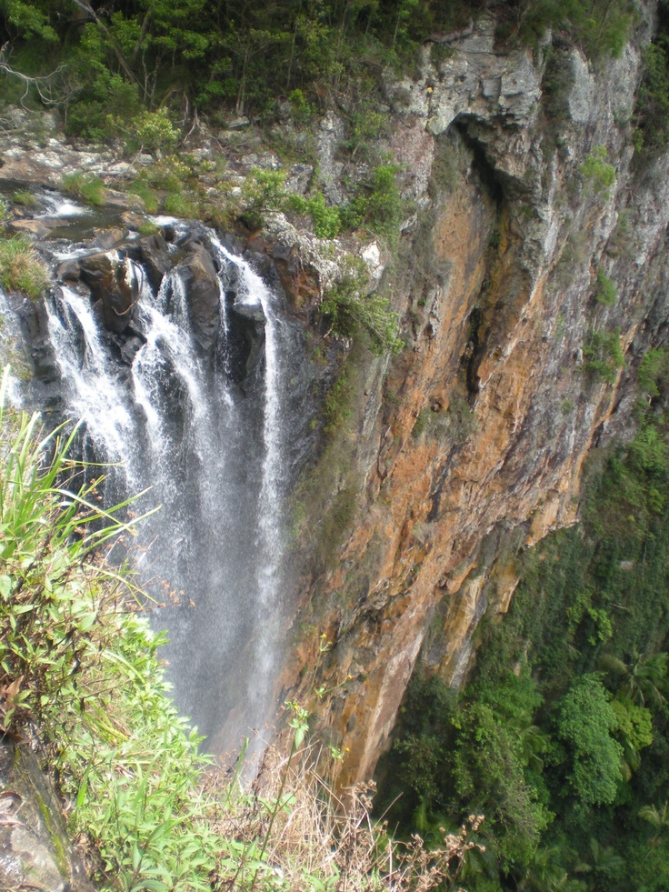 Springbrook National Park, Purling Brooks walk, Queensland by Andrea George