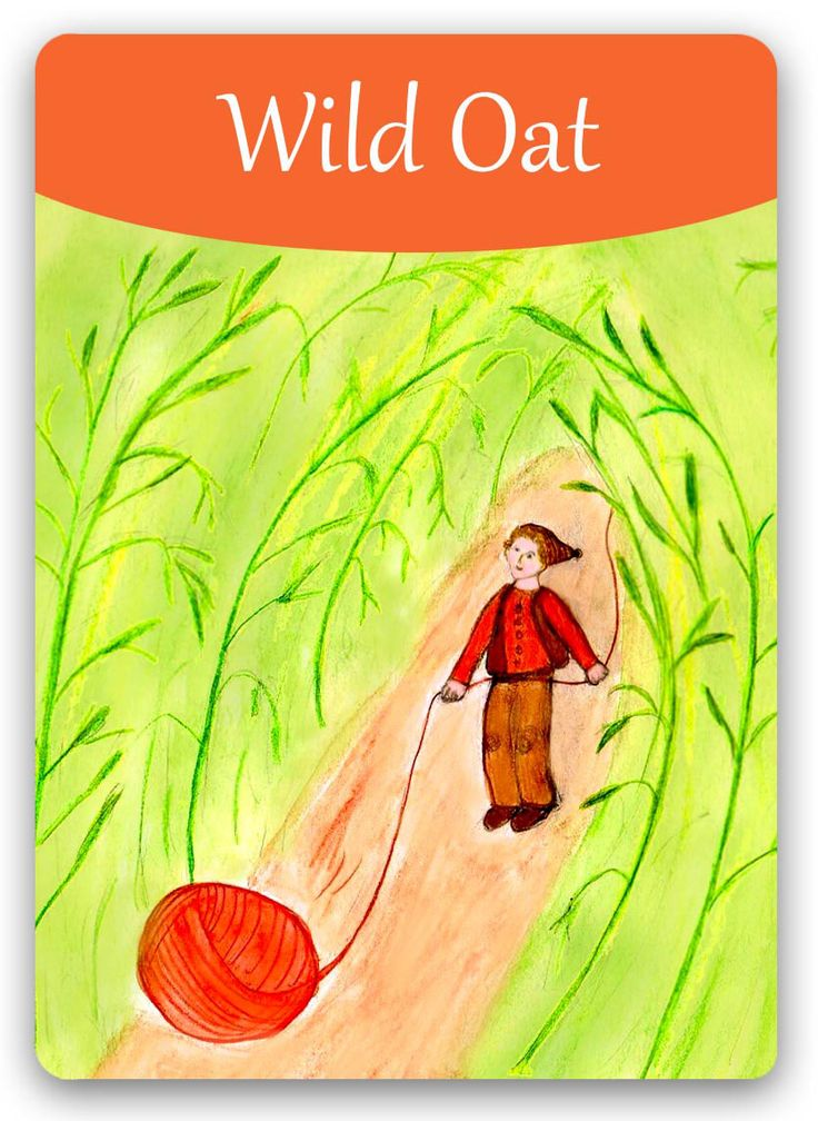 "Bach Flower Cards [Wild Oat] - The temporary Wild Oat state can occur during a ""midlife crisis"" or any time a career decision must be made-especially if many choices present themselves. When a person has lost contact with his Higher Self and cannot seem to identify his mission in life, Wild Oat will help him clarify his true goals and come to a right decision. He will begin to see a clear vision for his future and will once again rely upon his Higher Self to guide his actions."