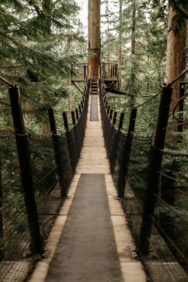 Discover the adventure you can have at Capilano Suspension Bridge Park in Vancouver, Canada.