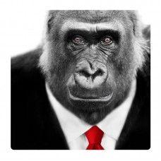 Gorilla falikép