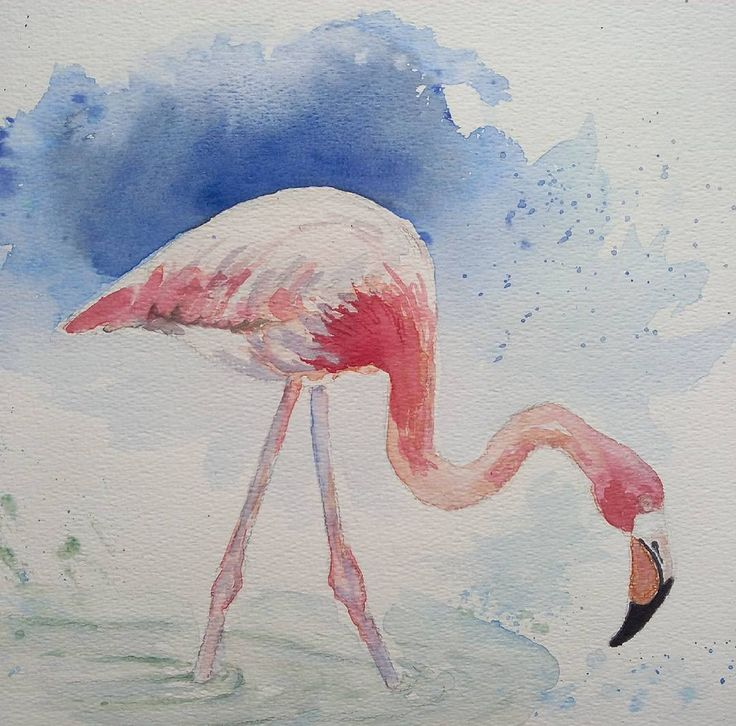 Aquarel flamingo #aquarel #aquarelle #pittura #watercolor #watercolour #watercolours #watercolourart #watercolour_gallery #watercolors #flamingo #flamingos #flamant #flamantrose #fenicottero #flamenco #tropicalbirds #tropical #vogels #birds #birdsofinstagram #birds_of_instagram #art_highlight #art_collective #arts #myart #mywork #forsale #myartwork #insta