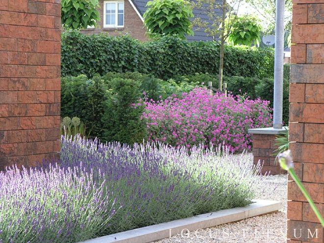 Onderhoudsarm en toch sfeervol met grote groepen Lavendel en Geranium in verhoogde borders. Nominatie Tuin van het Jaar.