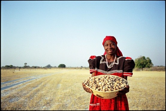 Eudofano Woman with Basket of Marula Kernels