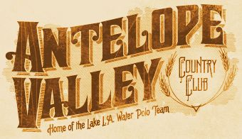 LHF Cavalero: Denise Bayers' font has an old fashioned western look to it, borrowing elements from old stock certificates. Includes many alternates to customize the design however you like. Set includes 4 fonts: Regular, Spurs, Distressed and Shadow.