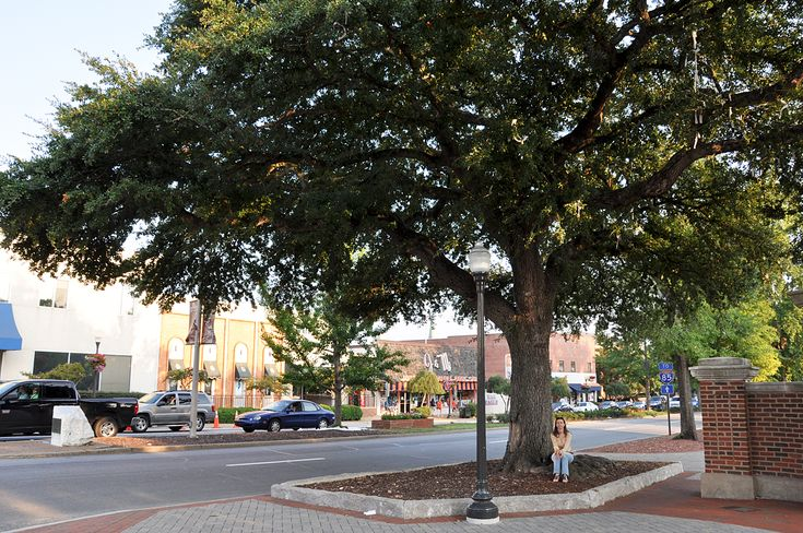 Toomer S Corner To Be Rolled In Auburn Soon Friday Feet