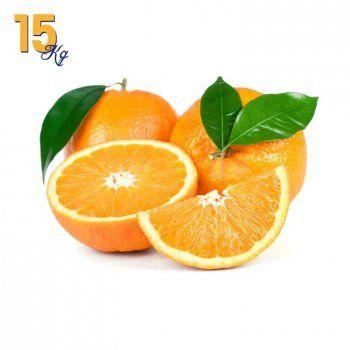 Comprar Naranjas Navel Powell en Caja de 15 Kg. Recién cortadas del árbol a tu casa en 24 horas