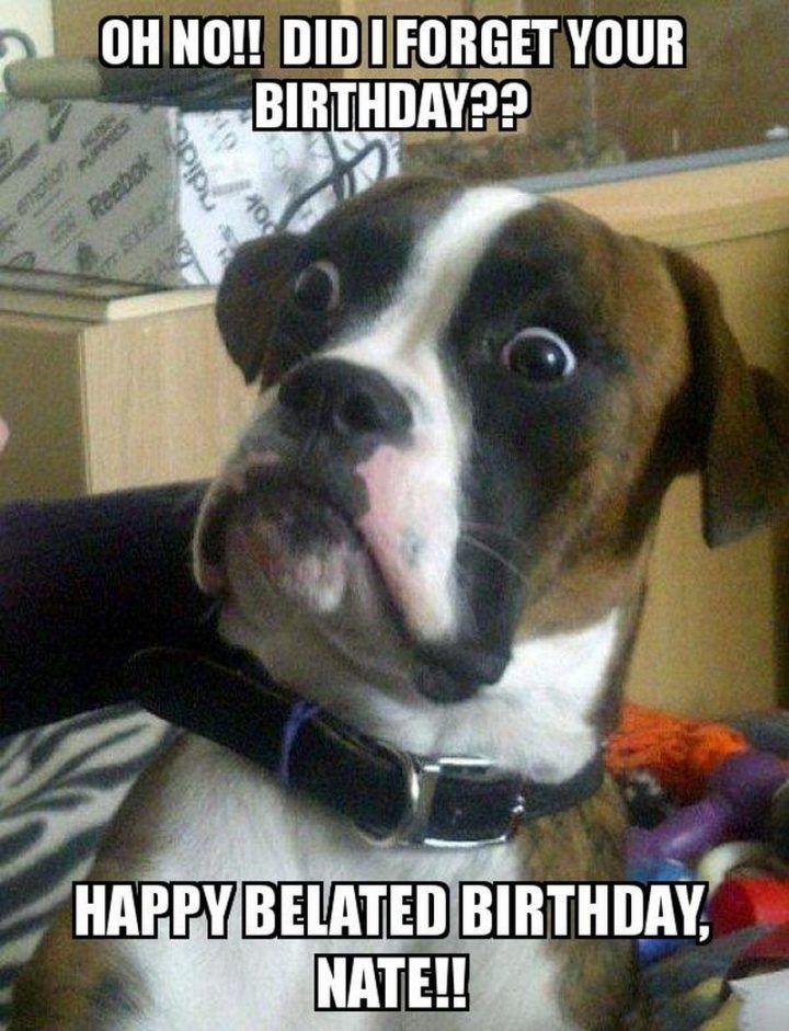Belated Happy Birthday Meme : belated, happy, birthday, Happy, Belated, Birthday, Memes, Forgot, Funny, Fishing, Memes,, Boxer, Funny,