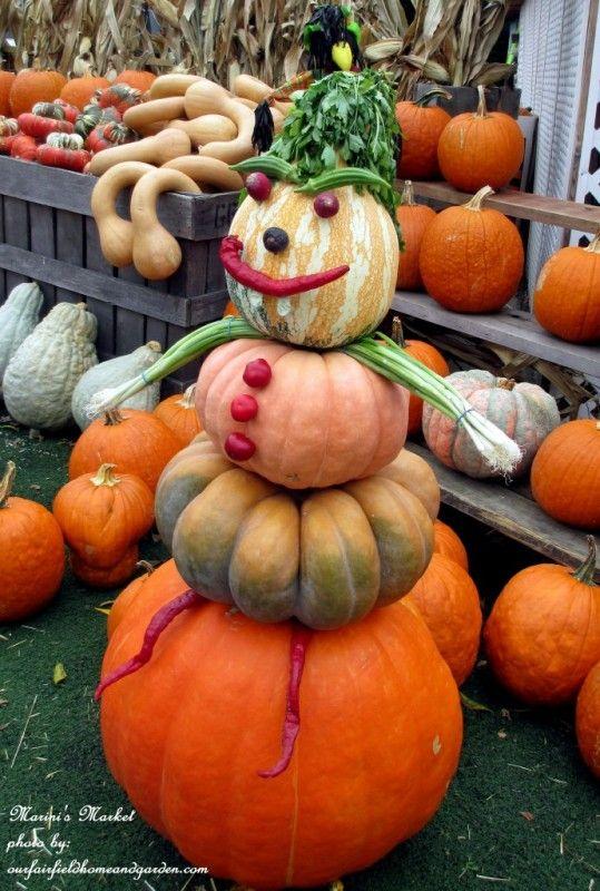 pump2 539x800 Celebrate fall with pumpkins in vertical garden  with veggie man pumpkin fall